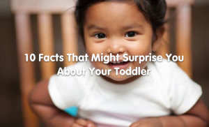 10 facts that might surprise you about your toddler