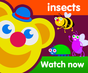title for freddy finds insects episode of the kneebouncers show on babyfirsttv
